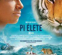 Pi élete (film)