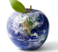 Az egészséghez vezető titok az egyensúly, és a Föld maga