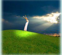 Gyógyító helyek, hit és gyógyulás