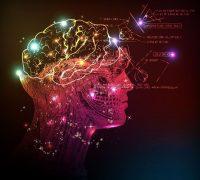 A lélek és a tudás