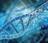 Beszélő DNS szálak