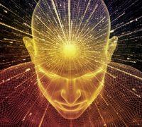 Út a bölcsességhez (Kryon)